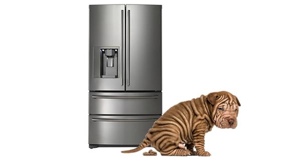 whirlpool refrigerator customer service guide. Black Bedroom Furniture Sets. Home Design Ideas